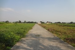 Plots near Highway for Sale